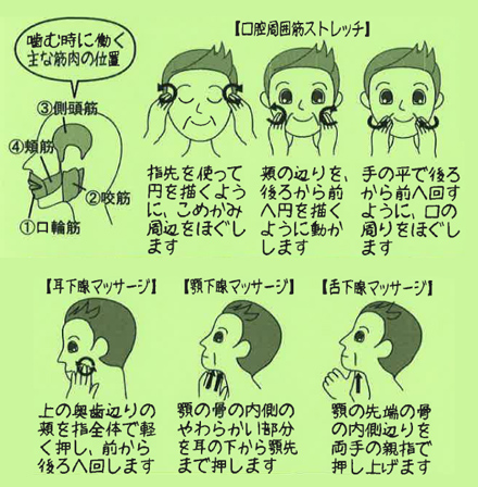 マッサージ 唾液腺 唾液腺が痛い!腫れる!唾液腺マッサージで予防!